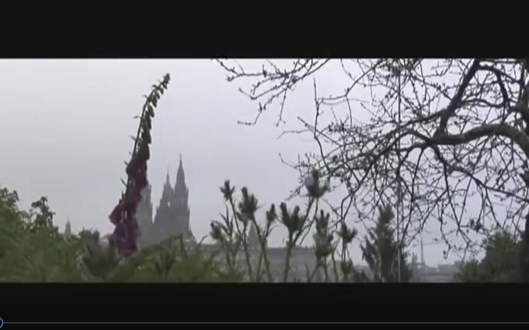 🎥 (Video) Espiritualidad en el Camino de Santiago