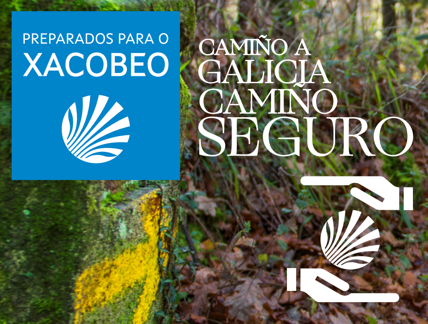 El delegado de peregrinaciones intervendrá  en el webinar Camino Seguro